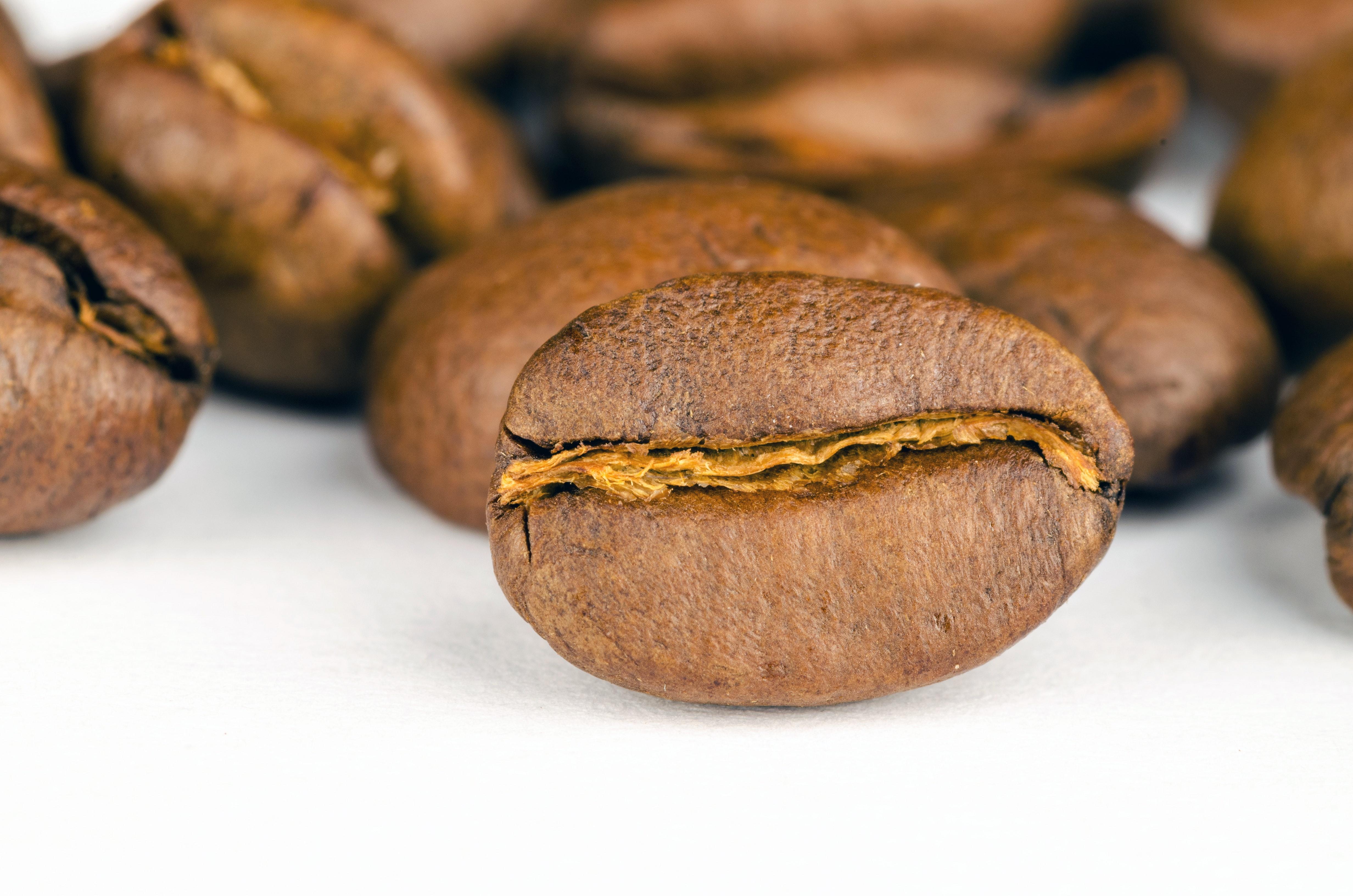 koffiebonen van dichtbij
